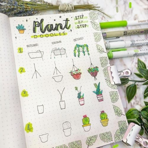 step by step plant doodles