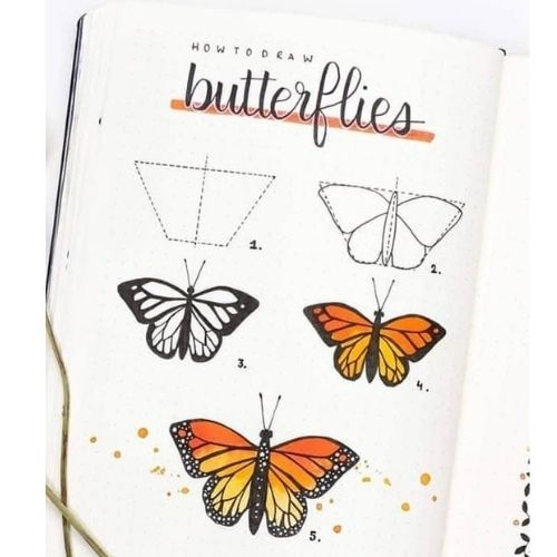 How to Draw Butterflies - Easy Step By Step Tutorial