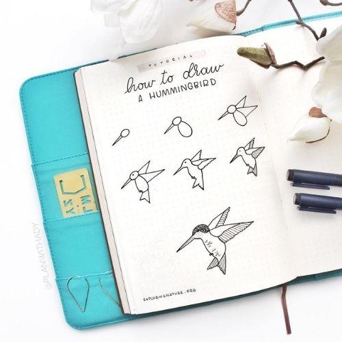How to Draw Hummingbird Doodles