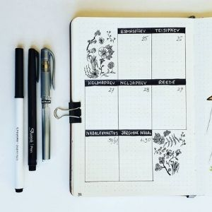 minimalist bullet journal weekly
